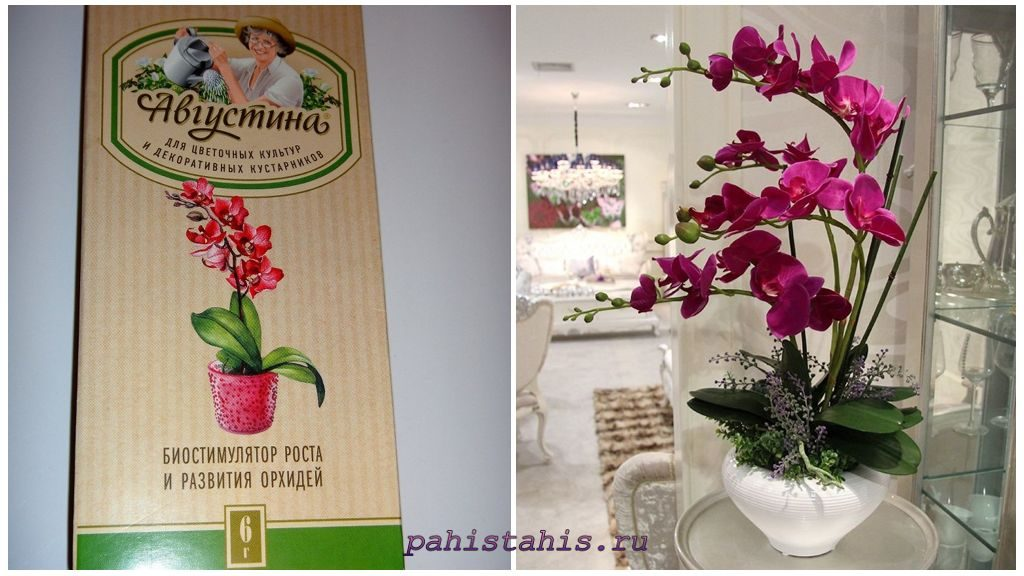 Биостимулятор Августина для орхидей