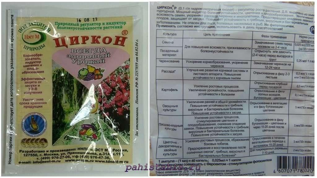 Применение Циркона для орхидей