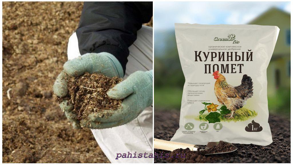 Органические удобрения для петунии