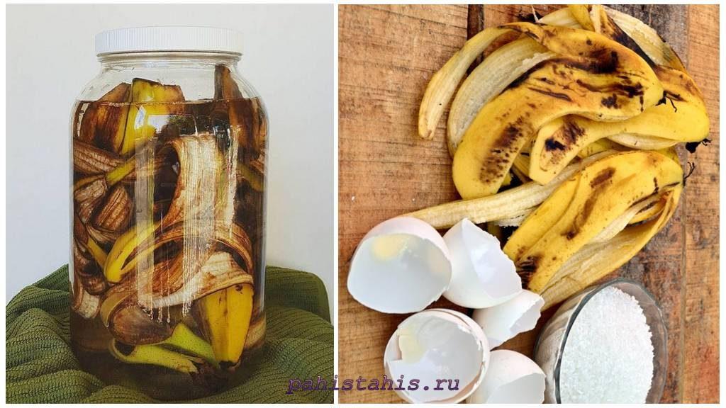 Подкормка из банановой кожуры
